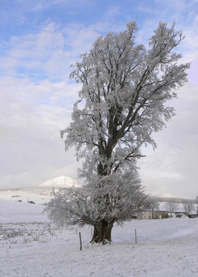 L'hiver à Cros de Géorand (Denis)