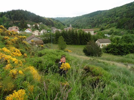 Le printemps à Cros de Géorand (Françoise)
