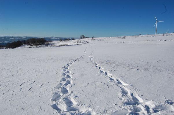 L'hiver à Cros de Géorand (Manu)