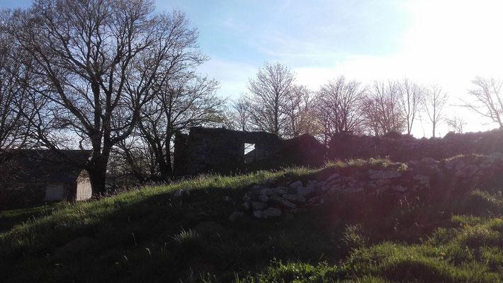 Le printemps à Cros de Géorand (Manon)