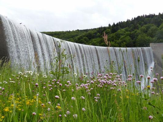 L'eau dans tous ses états sur le plateau ardéchois - Cros de Géorand - (Marion)