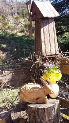 Les fleurs du plateau ardéchois - Cros de Géorand (Emma)