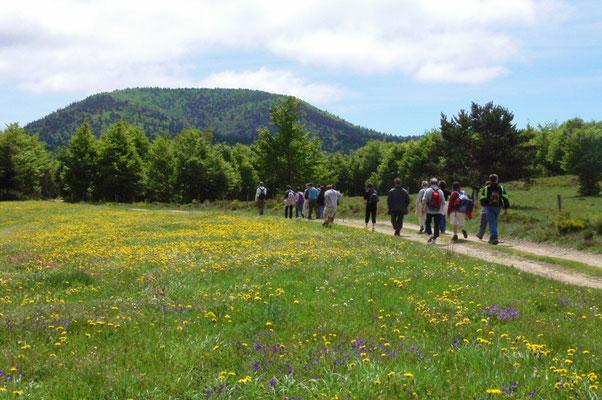 Le printemps à Cros de Géorand (Alban)