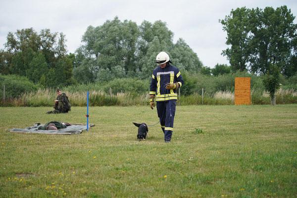 Basis Training 15