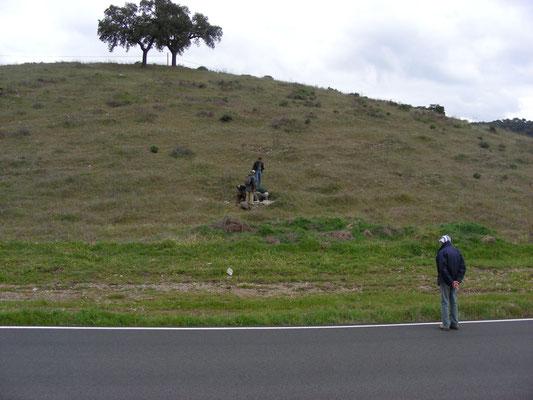 slangenrijke heuvel