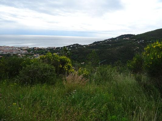 uitzicht op de kust