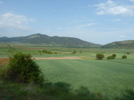 landbouwgebied, na drooglegging bergmeer