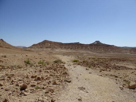 richting ammonietenwand in Ramon krater