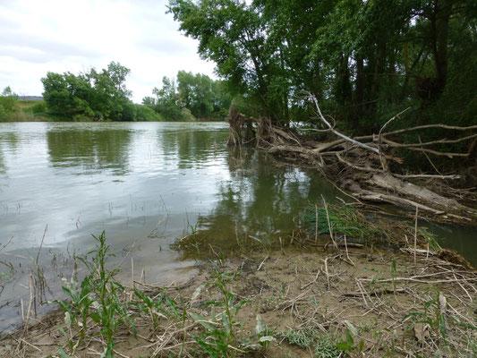 rivier Duoro