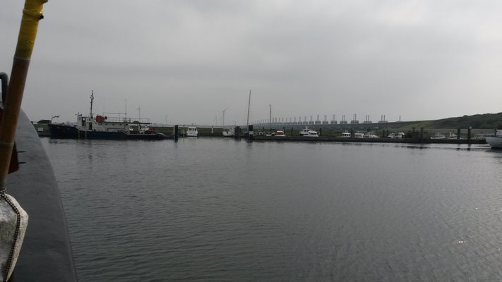 Terug in de haven