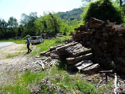 tussenstop met houtstapels