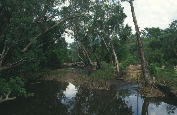 riviertjes in Kakadu NP