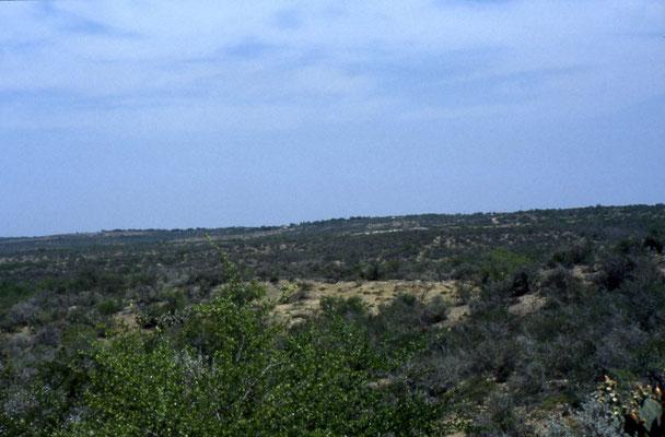 Uitzicht vanaf het Garner State Park