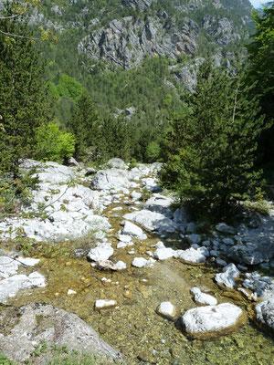 bergboswandeling nabij Prionia