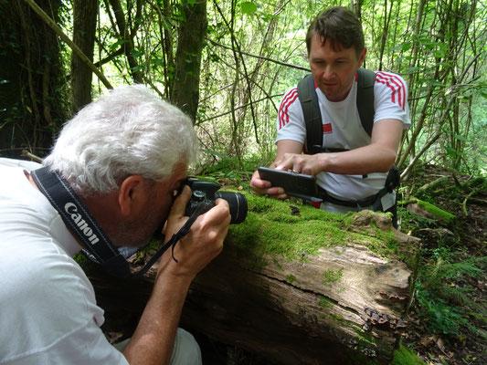 Ruud en Marcel fotograferen salamander, foto Anton