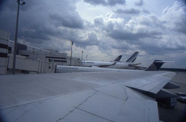 In het vliegtuig naar huis