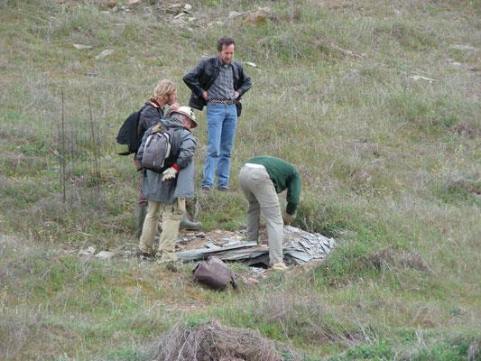 het tillen van een rotsplaat