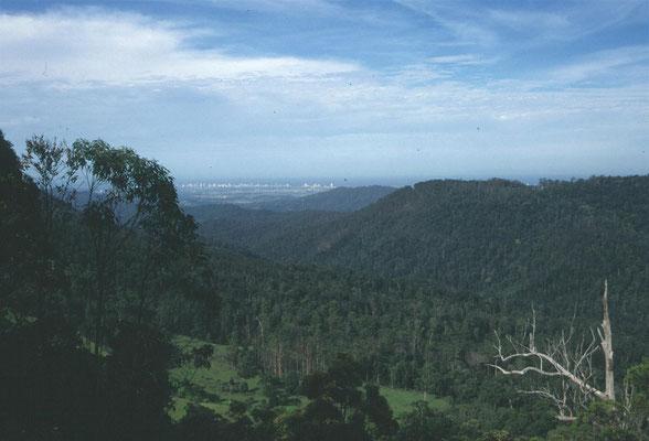 Uitzicht op de Gold Coast