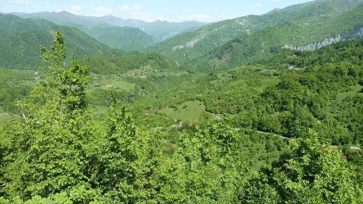 Vallei van Trmanje