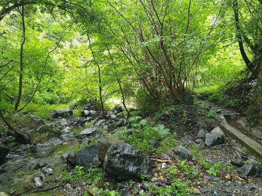 De omgeving van de grot, foto Marcel