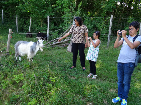Bhartie, Rashmi en Roshan
