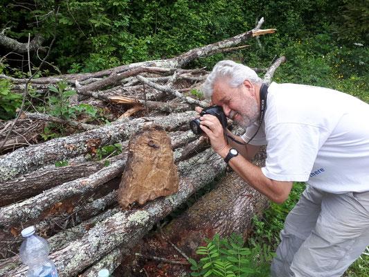 Ruud fotografeert grottensalamander