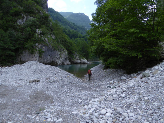 rivier in vallei Trmanje