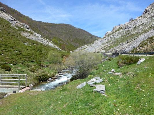 beek ten zuiden van Picos