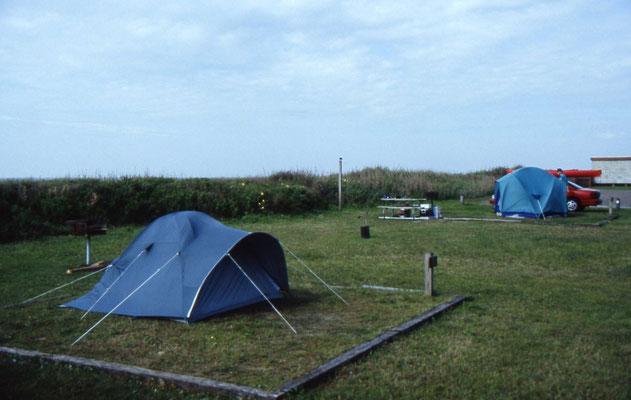 Onze kampeerplek in het Sea Rim State Park