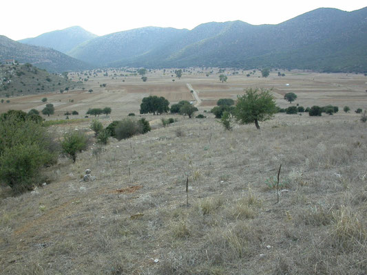 omgeving Nestani