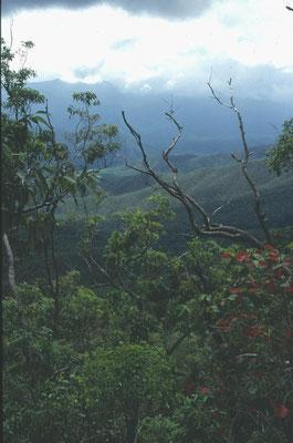 Uitzicht Tableland