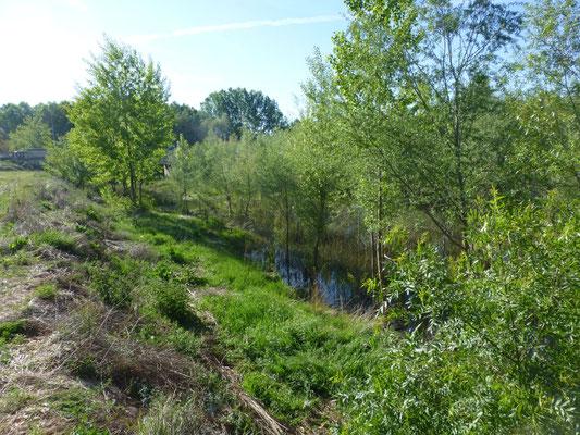riviertje Arianza