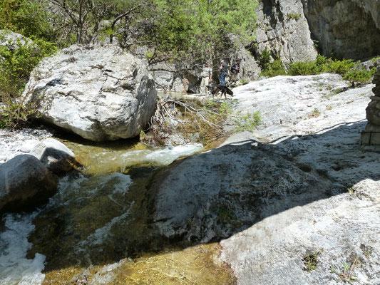 biotoop voor Bombina variegata en Rana balcanica