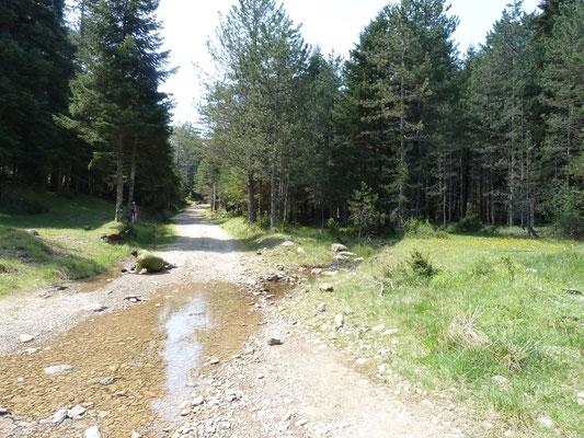 Locatie van Bombina variegata en Triturus macedonicus