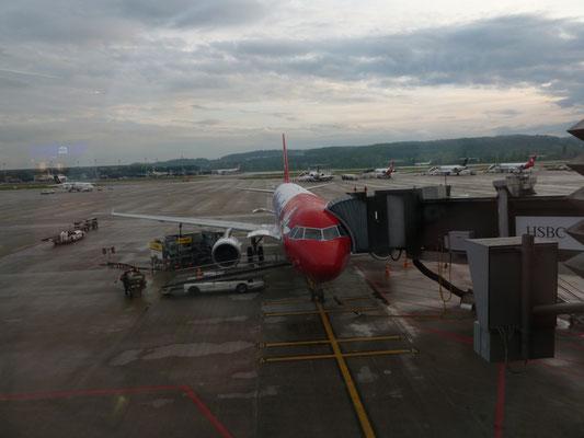het vliegtuig terug