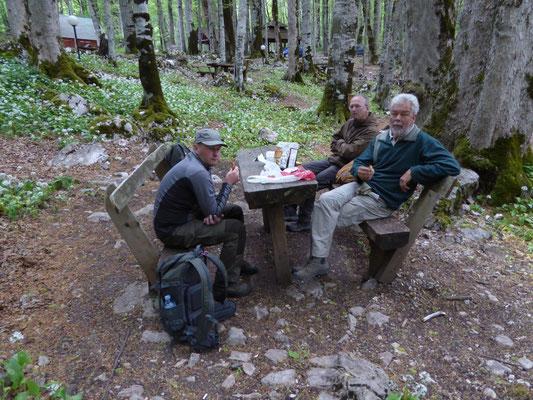 het ontbijt, aan Biogradska Jezero
