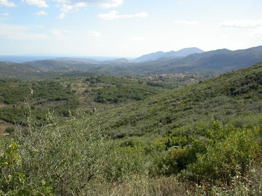 omgeving Platanos