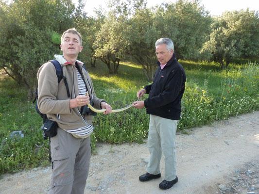 Martin en Carlo meten de lengte