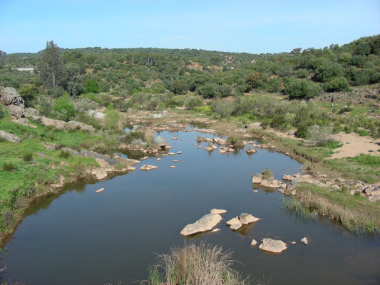 tussenstop rivier