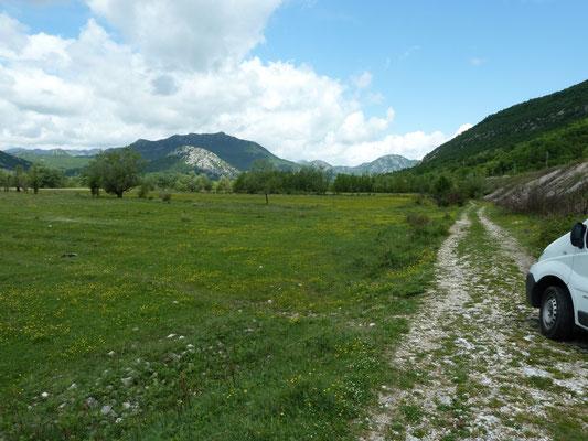 vlakte ten zuiden van Virpazar