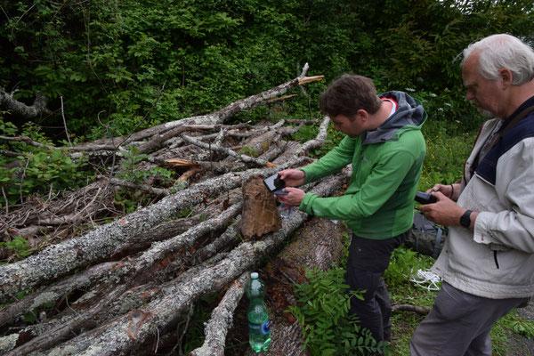 Marcel fotografeert grottensalamander