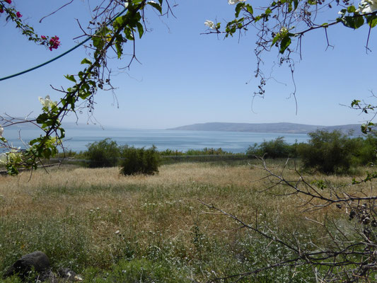 Meer van Tiberias/ Zee van Gallilee