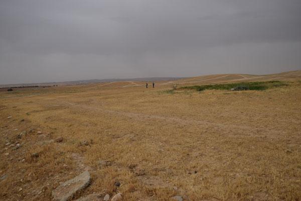 Gebied nabij Arad