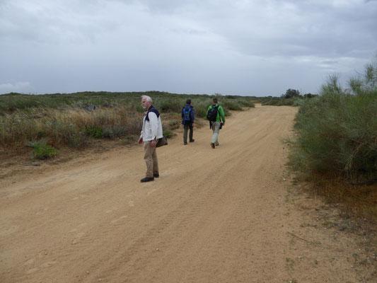 wandeling in duinen ten noorden van Ashjkelon