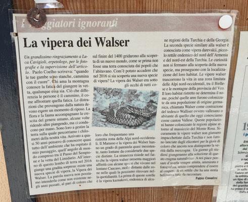 krantenartikel Walseradder, foto Marcel