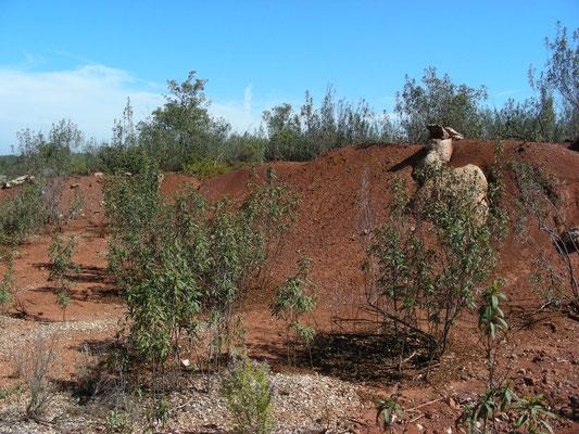 terrein rond de oude ijzermijn