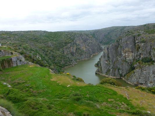 rivier Duoro bij Miranda do Duoro