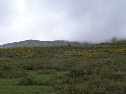 hoger gelegen heuvels