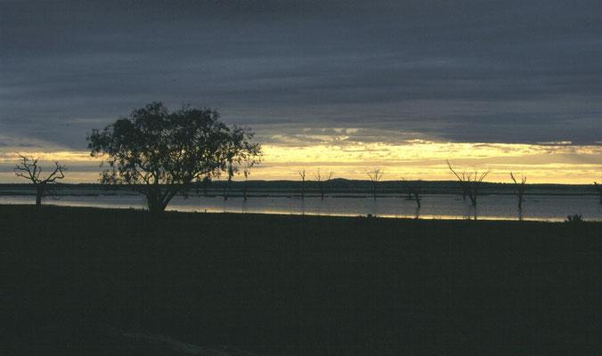 Lake Cowal