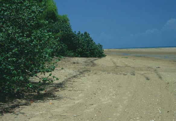 Lee Point, Darwin